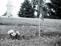 Mount Olivet Cemetery - Nashville, Tennessee - Olympus OM1 / 50mm f1.8 / Kodak TRI-X 400 / The FINDlab