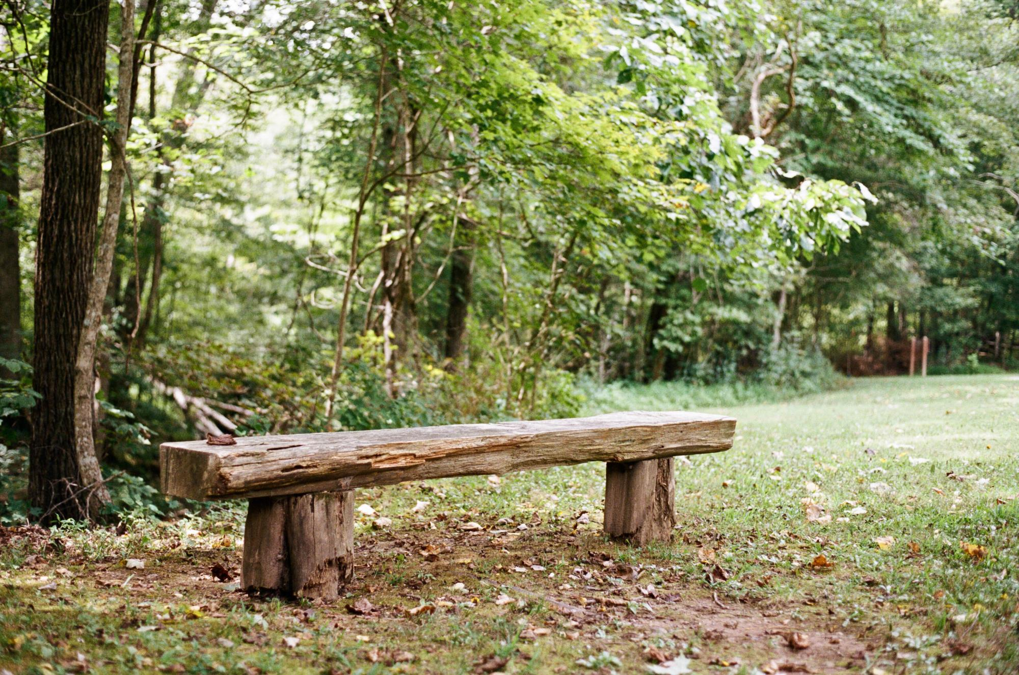 Bench at Montgomery Bell State Park