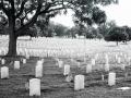 Nashville National Cemetery - Madison, Tennessee - Olympus OM1 / 28mm f3.5 / Kodak TRI-X 400 / The FINDlab