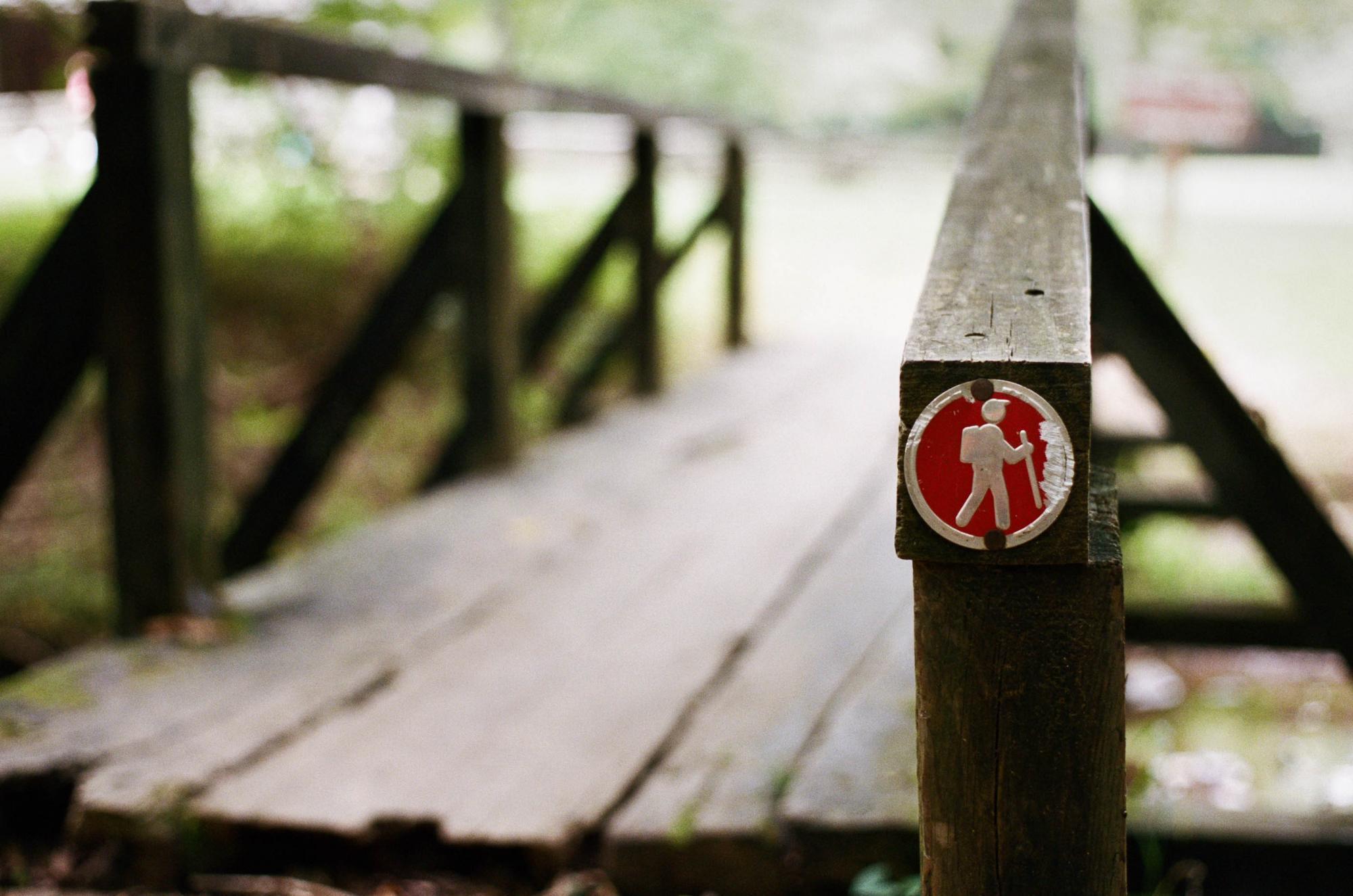Hiking Bridge at Montgomery Bell State Park